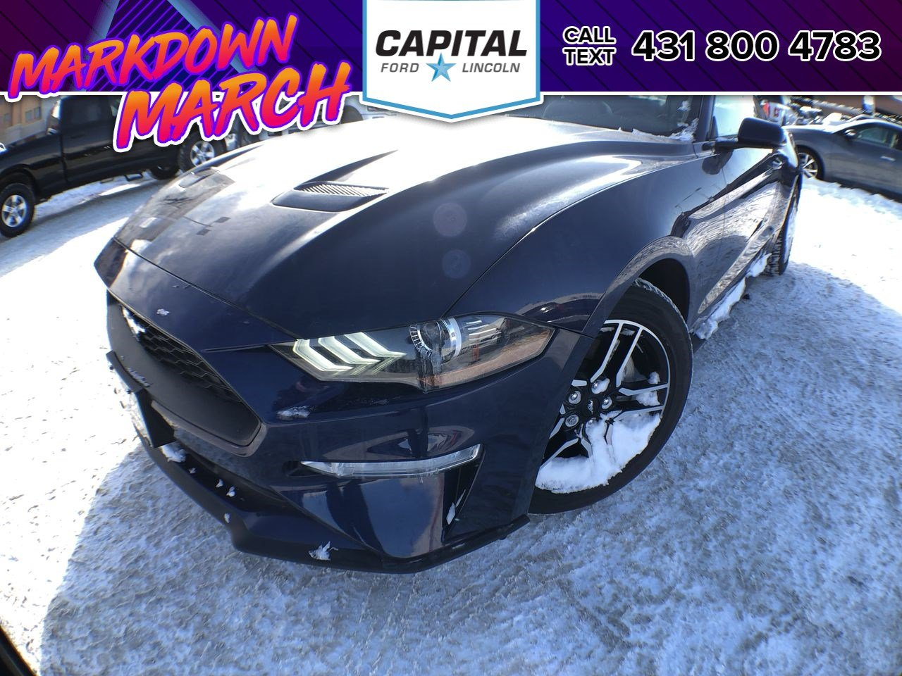 New 2018 Ford Mustang $7 000 savings! EcoBoost Premium*Navigation*Leather*6 spd Manual*