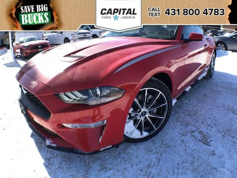 New 2019 Ford Mustang EcoBoost Premium*Automatic*Navigation